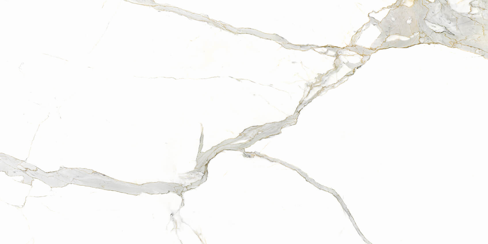 Calcatta Michelangelo Lucidato